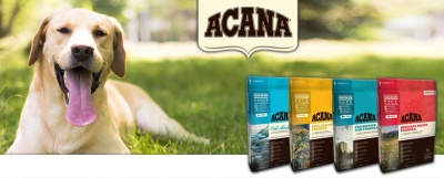 Acana Dog Food: Qualità e Garanzia Made in Canada.